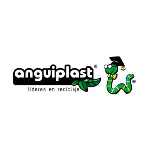 Angruplast SA de CV