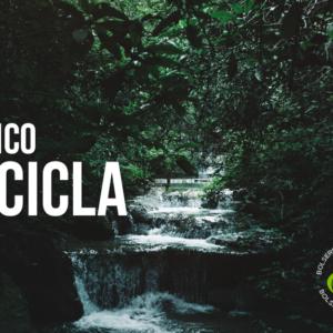 México recicla