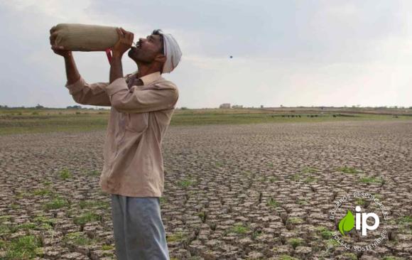 Crisis ecológica allanará al país